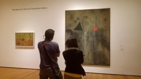 viewing-art-museum-of-modern-art