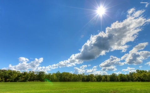 sun-sky-cloud-field-tree